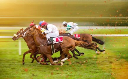 Off-Track Betting: How to Pick a Winning Horse