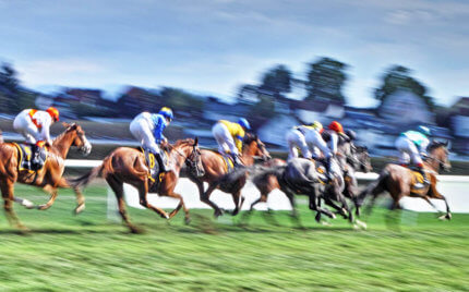 Bangalore Race Odds, December 19, 2020