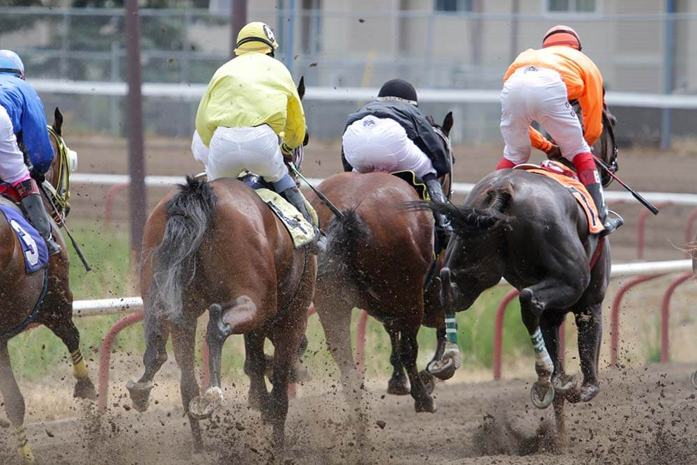 horse race betting in pune india